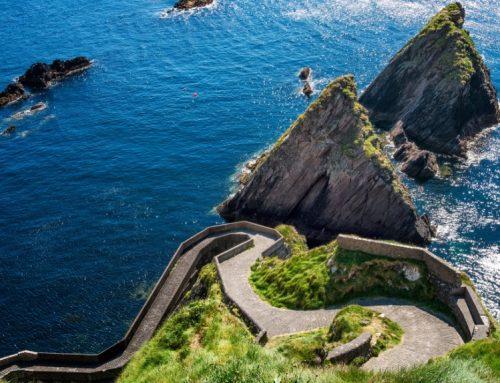2019年爱尔兰投资移民形势解读